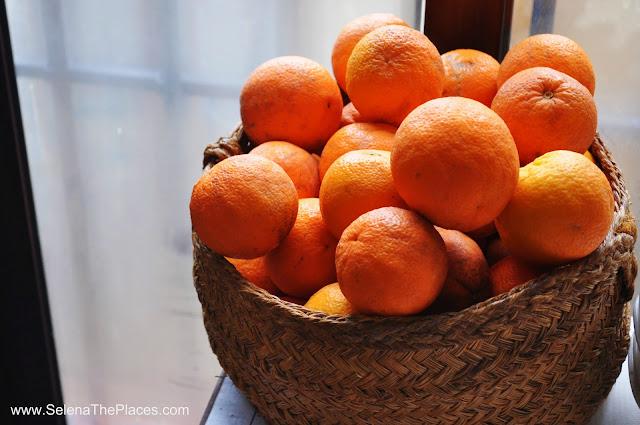 Basket of Oranges Ronda, Spain