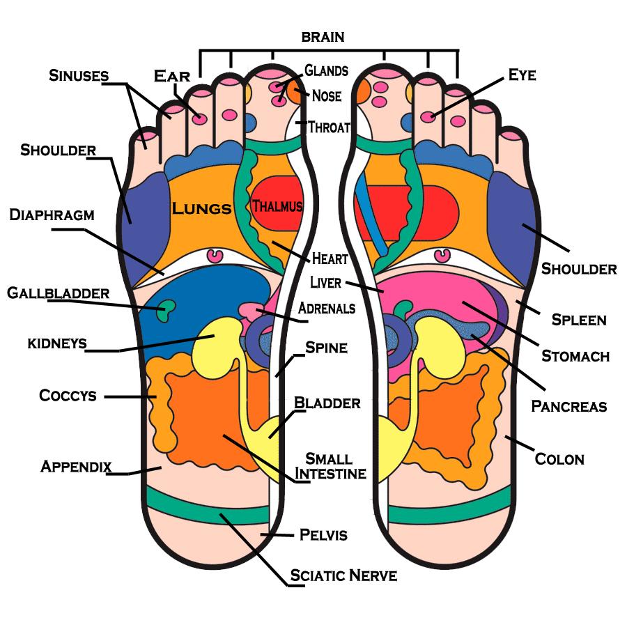 Emotion just Bottom foot nerve damage dobrze miec