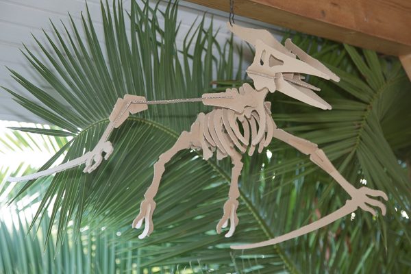 squelette de ptéradon découpé dans du carton de récupération