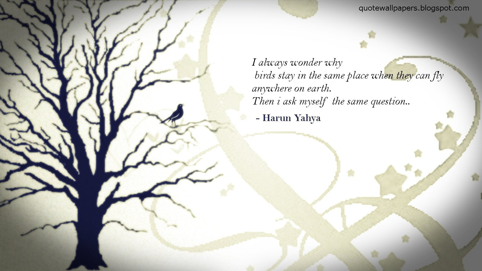 I always wonder why birds stay in the same place when they can fly anywhere on earth. ~Harun Yahya