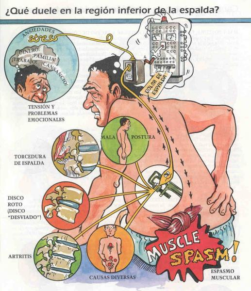 Vegeto los desajustes vasculares a sheynom la osteocondrosis
