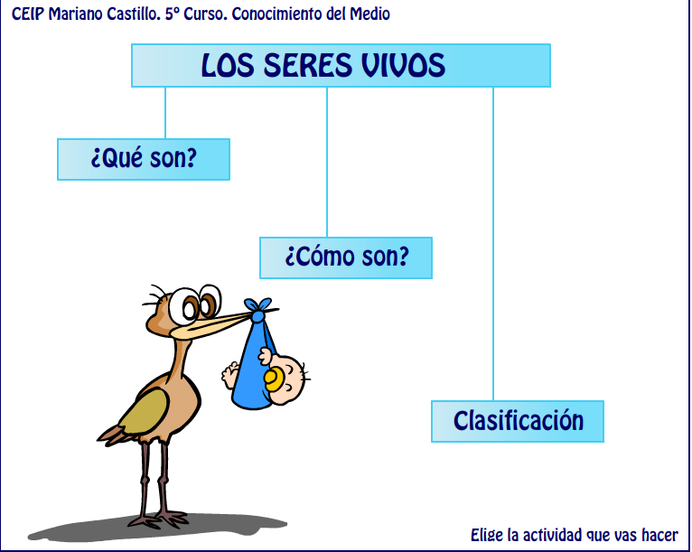 http://catedu.es/chuegos/kono/quinto/t1/intro.swf