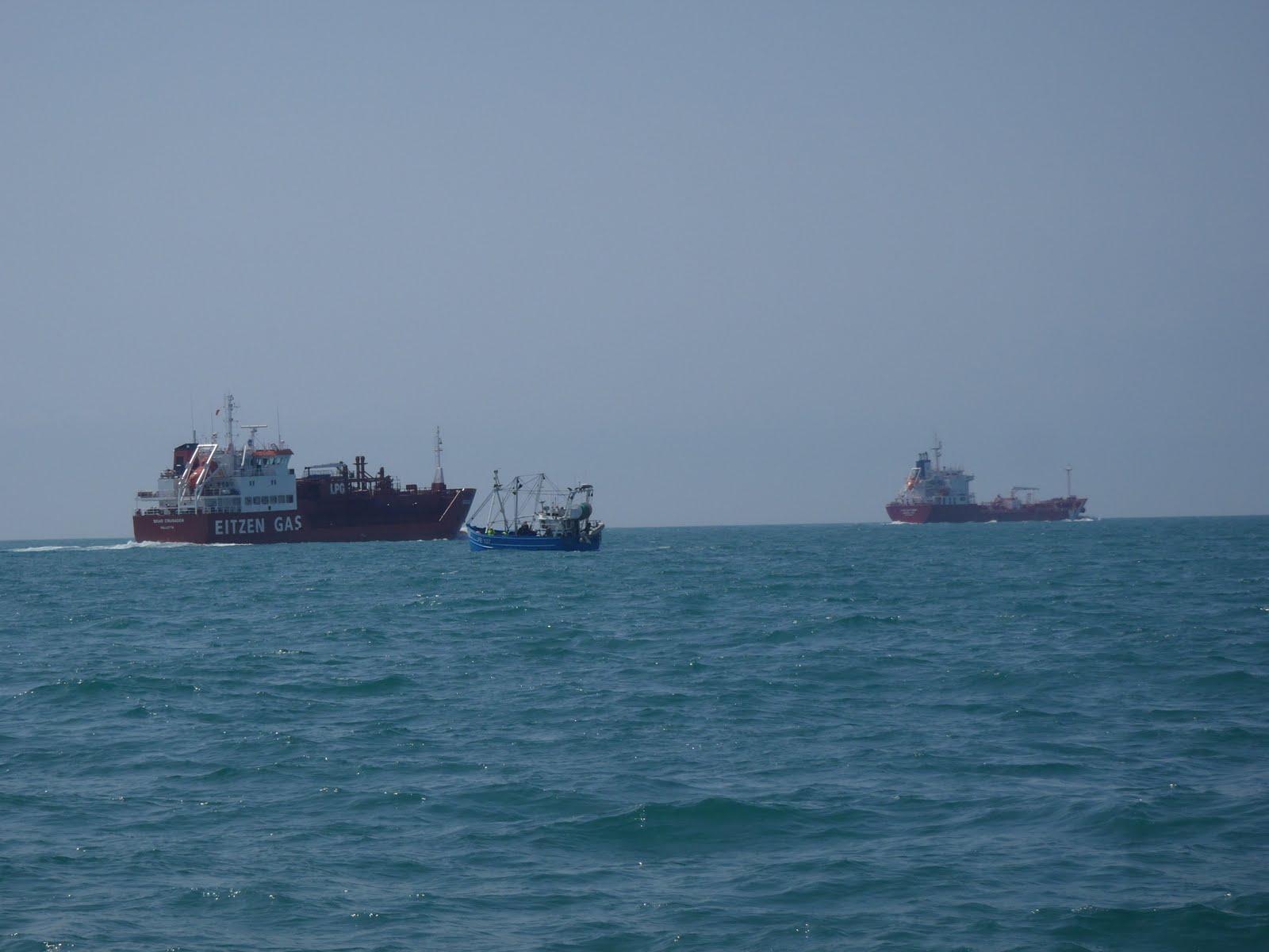 Among the many boats out today, I see Viking Princess ahead.