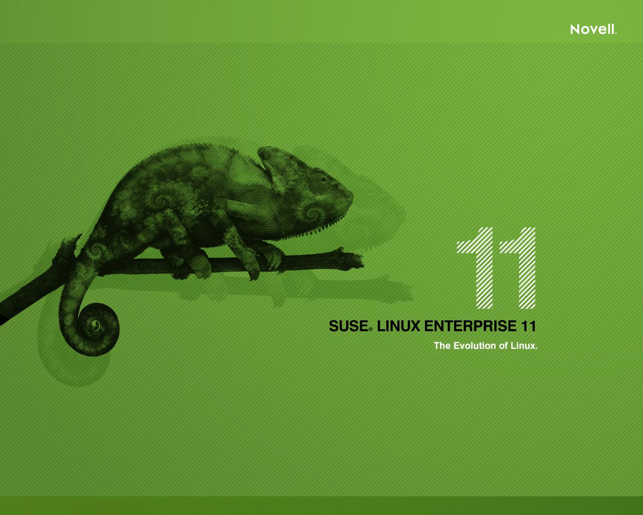 suse linux дистрибутив: