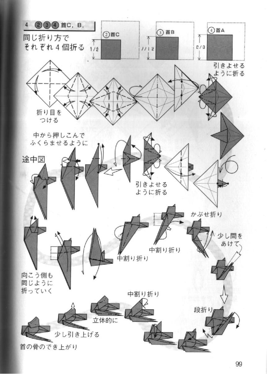 Famoso Diagramas Esqueleto Viñeta - Imágenes de Anatomía Humana ...