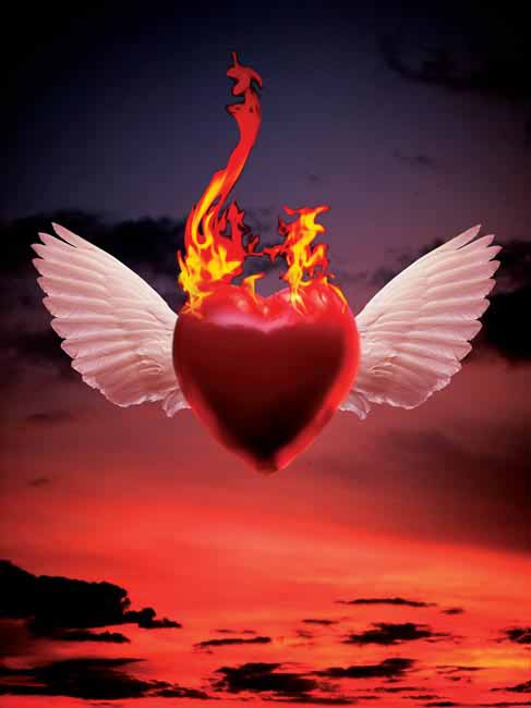 Burning Love HD Wallpapers Desktop Wallpaper