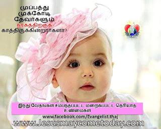 11174890_881134035268310_3548514795802727811_n.jpg