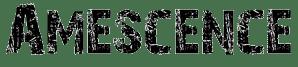 amescence, groupe de rock français