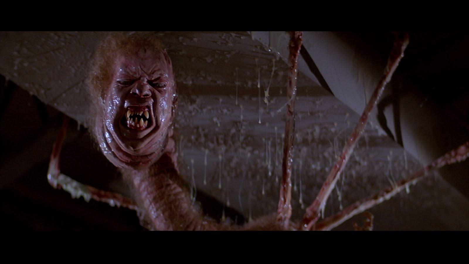 Bed Bug Horror Movie