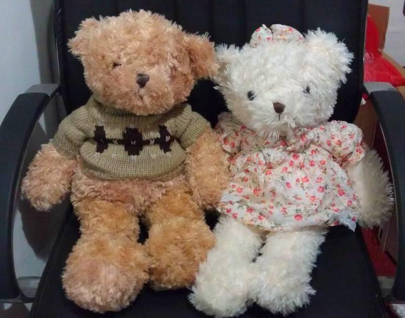 Gambar boneka teddy bear lucu berpasangan