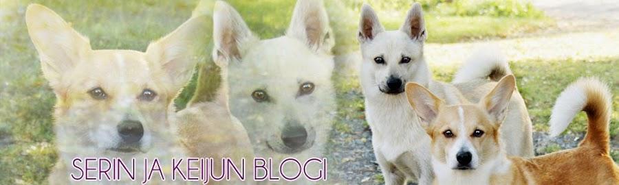 Serin ja Keijun blogi