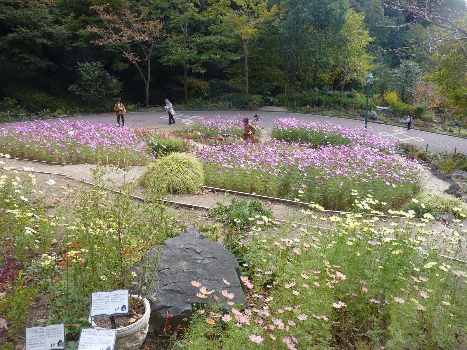 mushingo trip to japan day 12 kobe