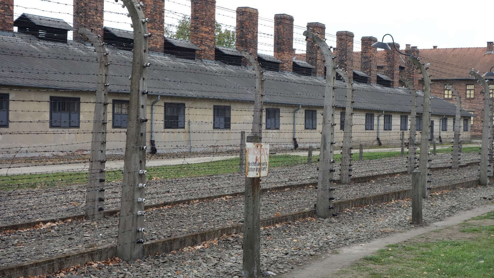 Pictures of consentration camps 2016 NOMINEES BEFFTA AWARDS