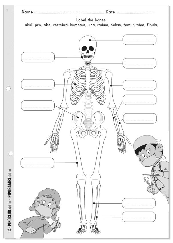 juegos educativos pipo  our bones