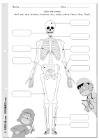 Label me printable - Bones, skeleton Pipo by @evapipo Level Easy KS2,