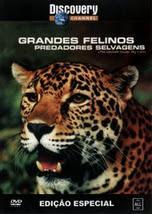 Grandes Felinos: Predadores Selvagens Download Filme
