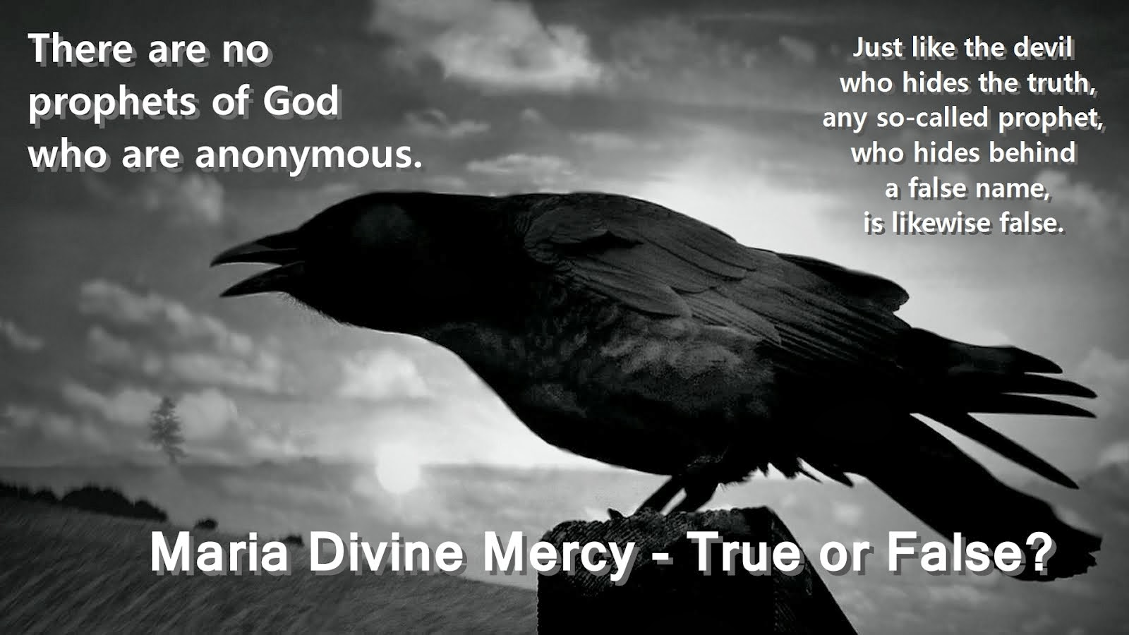 Maria Divine Mercy - True or False?