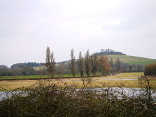 Wittenham Clumps today from afar