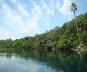 San Marcos Spring Lake