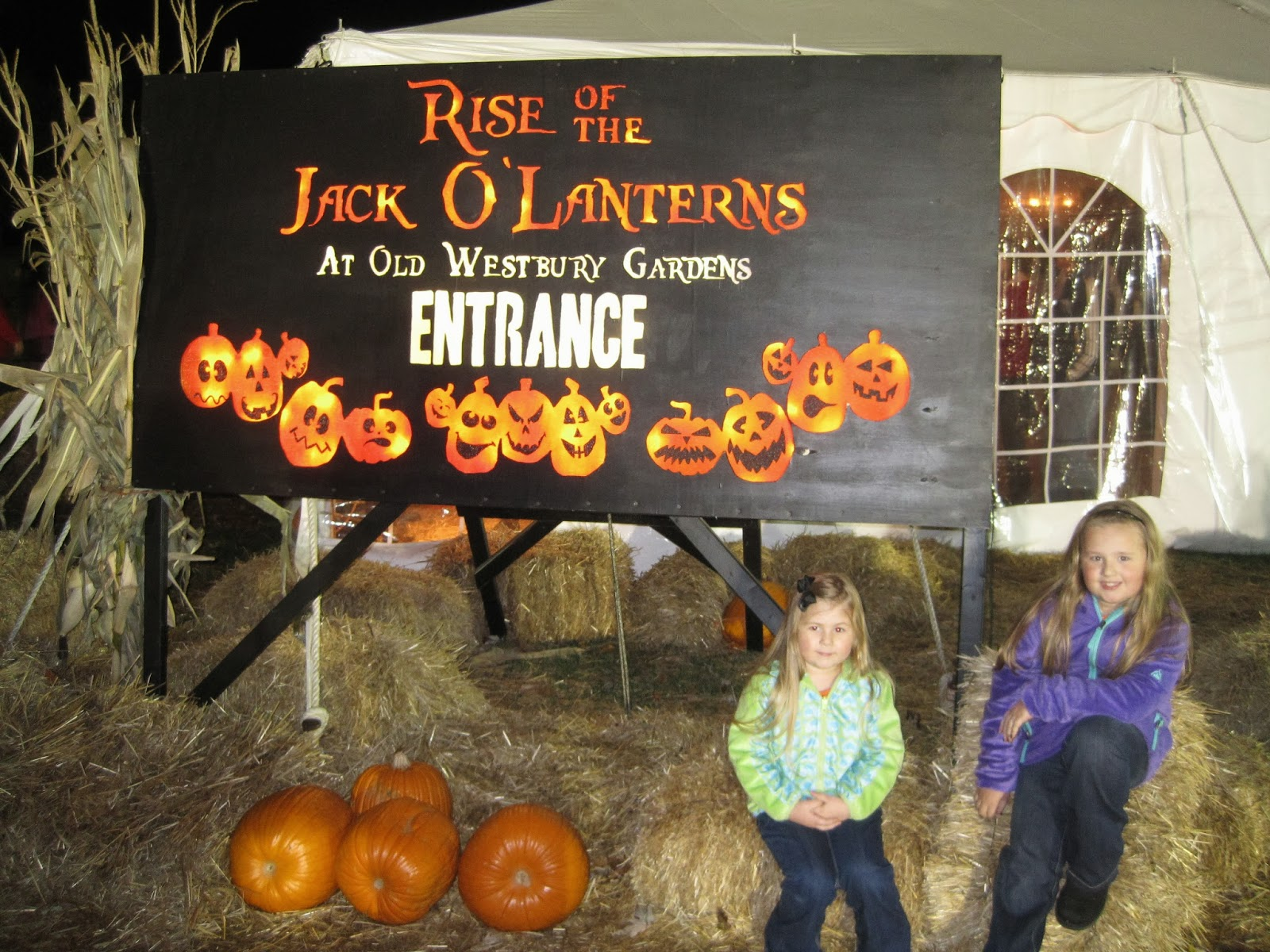 The North River: Rise of the Jack O\' Lanterns