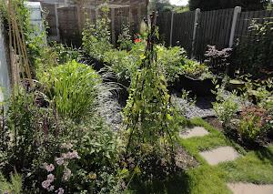 Gwenfar's garden