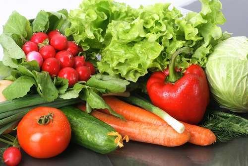 Losing weight raw food diet plan free