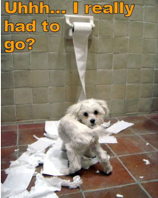 Dogs with Funny Quotes