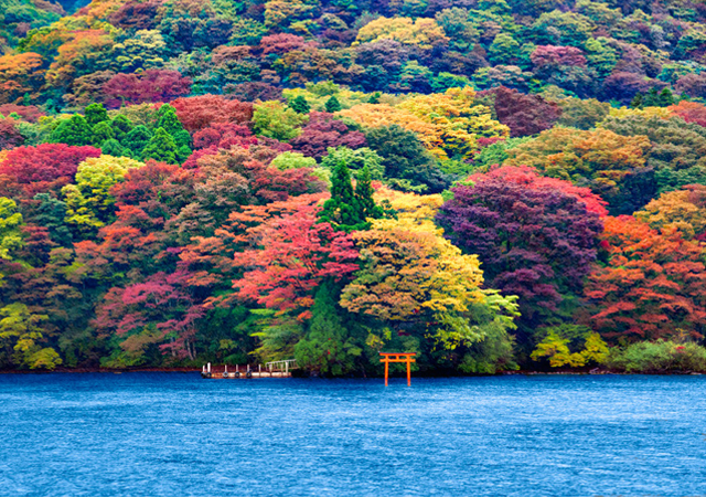 Ashi Lake, Japan, natural photography
