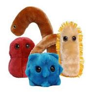 Microbiología UMH