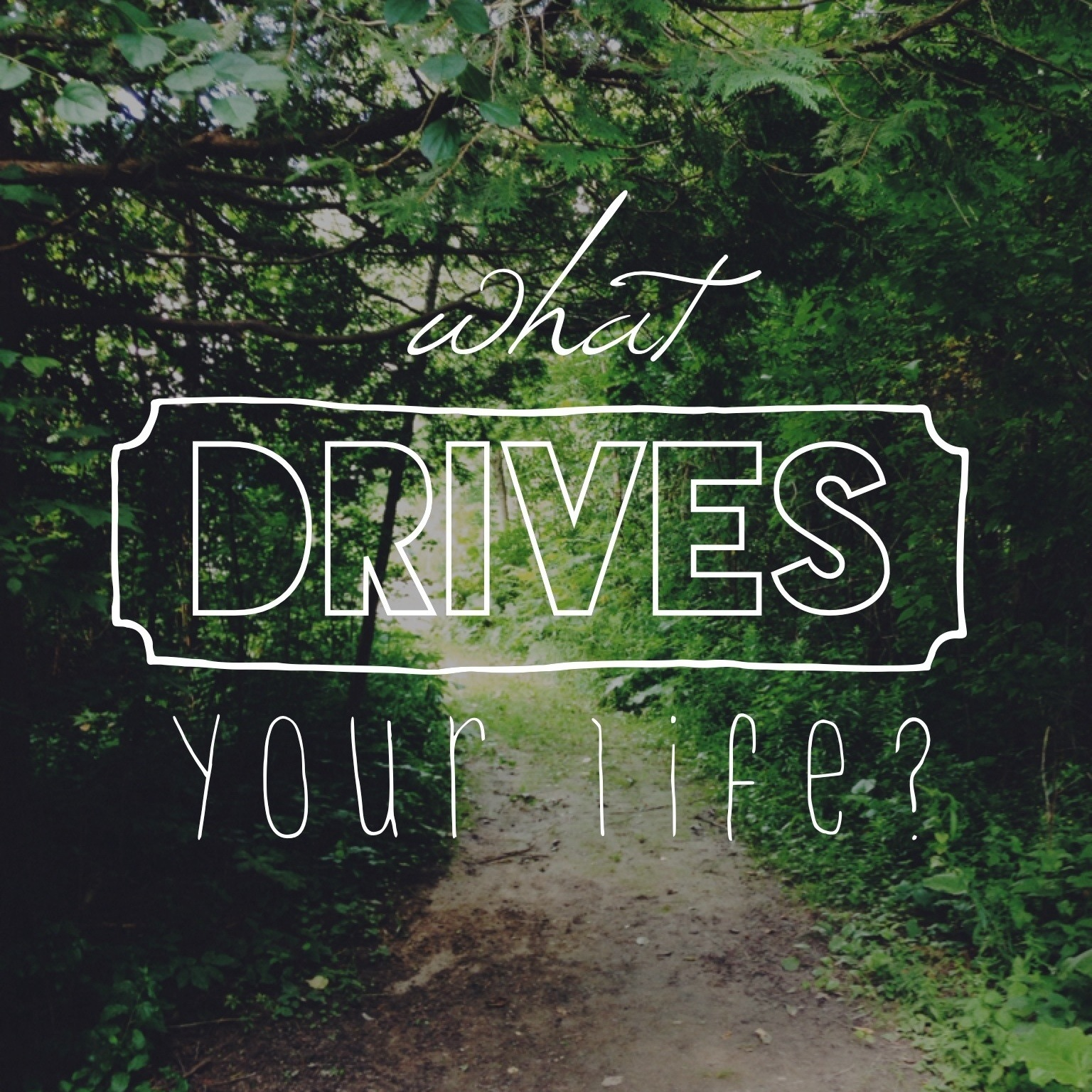 "what drives your life ""if you insist on saving your life, you will lose it only those who throw away their lives for my sake and for the sake of the good news will ever know what it means to really live"" (mark 8:35 lb) god wired the universe so that happiness does not come from status, salary, sex, or success."