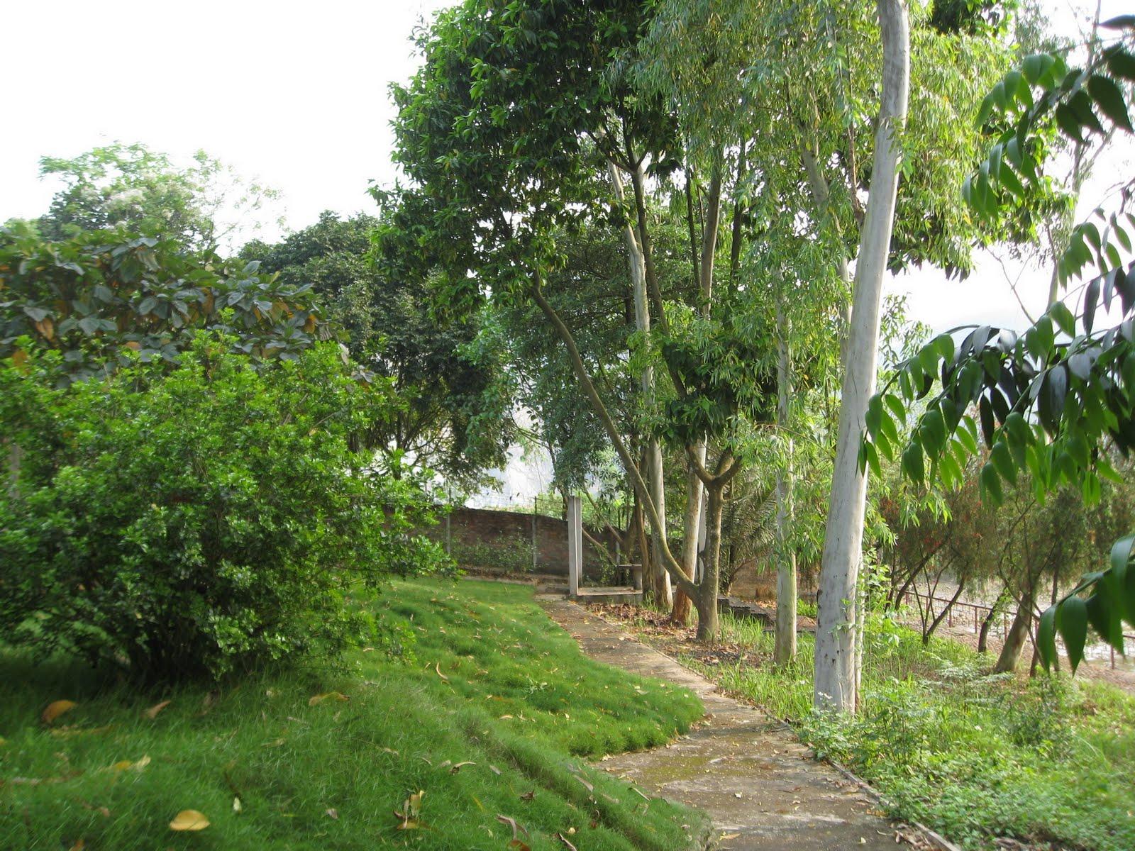 http://1.bp.blogspot.com/-ROjHx3Q0JaA/TayIelBsiXI/AAAAAAAAAN4/D565Xi7yaiw/s1600/c12.jpg