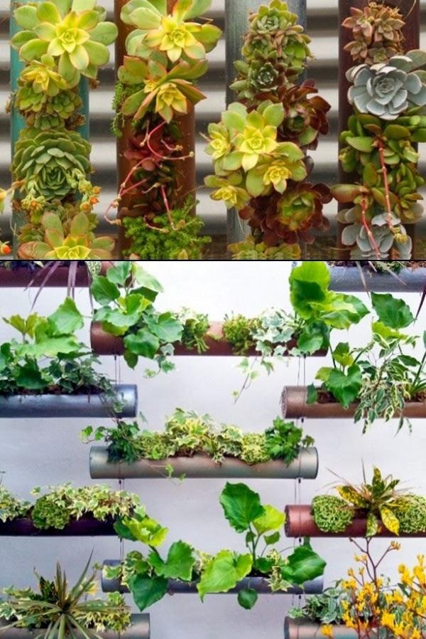 fotos de jardins horizontais : fotos de jardins horizontais:de jardinagem estes arranjos servem tanto para jardins horizontais
