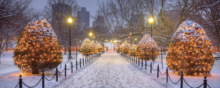 Five Free and Affordable Things to Do in Boston This Holiday ...