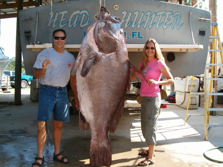Large Grouper Caught In Florida