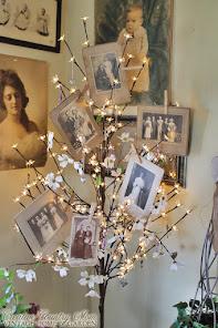 """""""A Family Tree"""""""