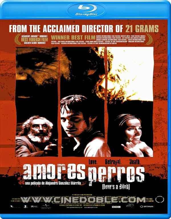 amores perros 2000 bdrip fullhd latino Amores Perros (2000) 1080p Latino