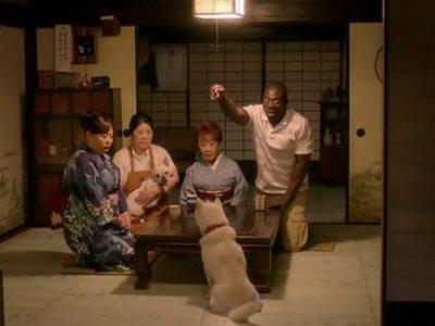 Família Softbank