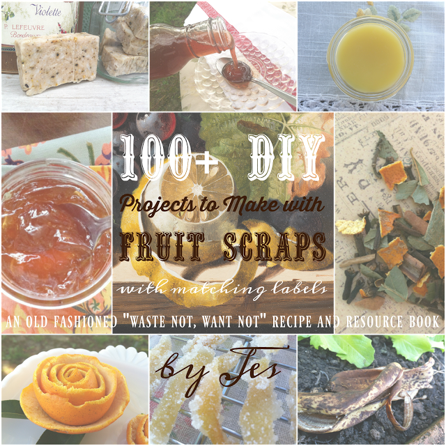100 DIY Projects to Make with Fruit Scraps