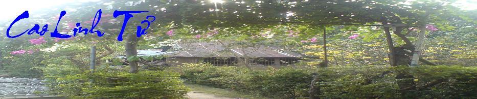 Cao Linh Tử
