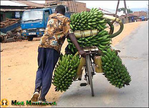 Bicicleta para babanas