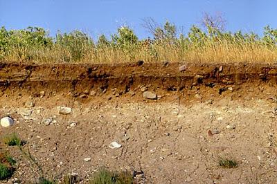Pengertian dan Definisi Tanah Menurut Para Ahli