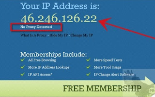 Here is my online search result IP and no Proxy Detected Great work.