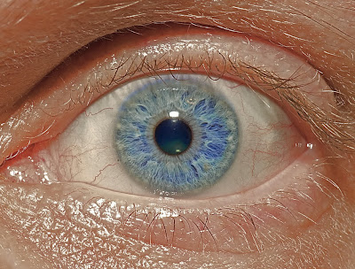 tips for photographing the human iris