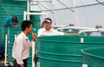 http://www.fao.org/aquaculture/en/