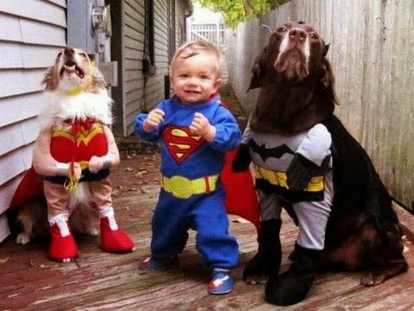 perros y niño disfrazados