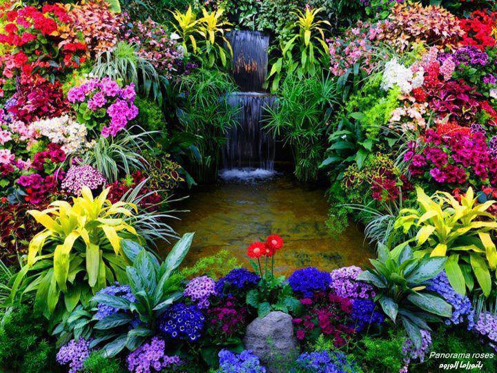 Ketenangan Dan Kedamaian Irama Air Di Taman Bunga Relaks
