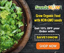 Save Now @seedsnow