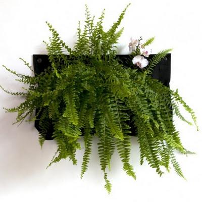 Jardines verticales para el interior y exterior de tu casa for Jardines verticales casa