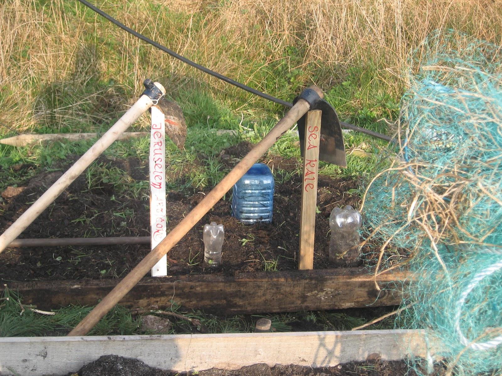 Irish kitchen garden a connemara croft new permabed for Gardening tools ireland
