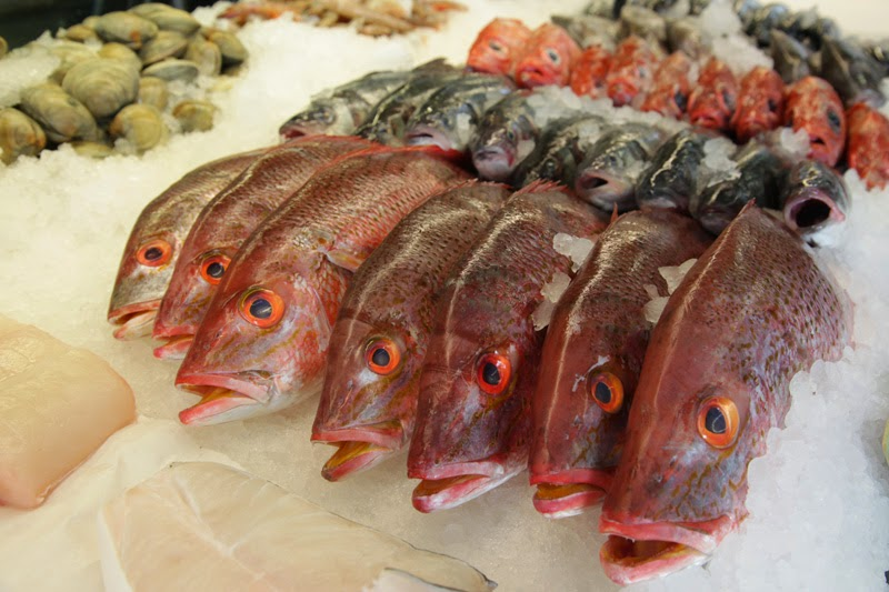 http://www.tampabay.com/news/science/new-handheld-device-can-fish-out-fake-grouper/1264792